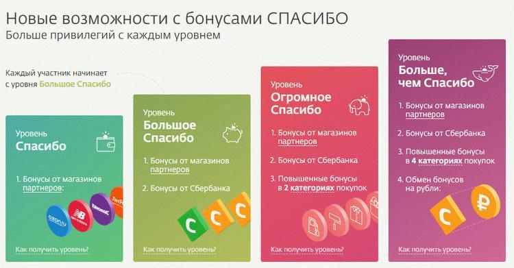 Этапы программы