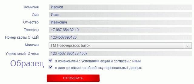 Форма регистрации чека Окей